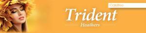 Trident heathers furlongs nuneaton